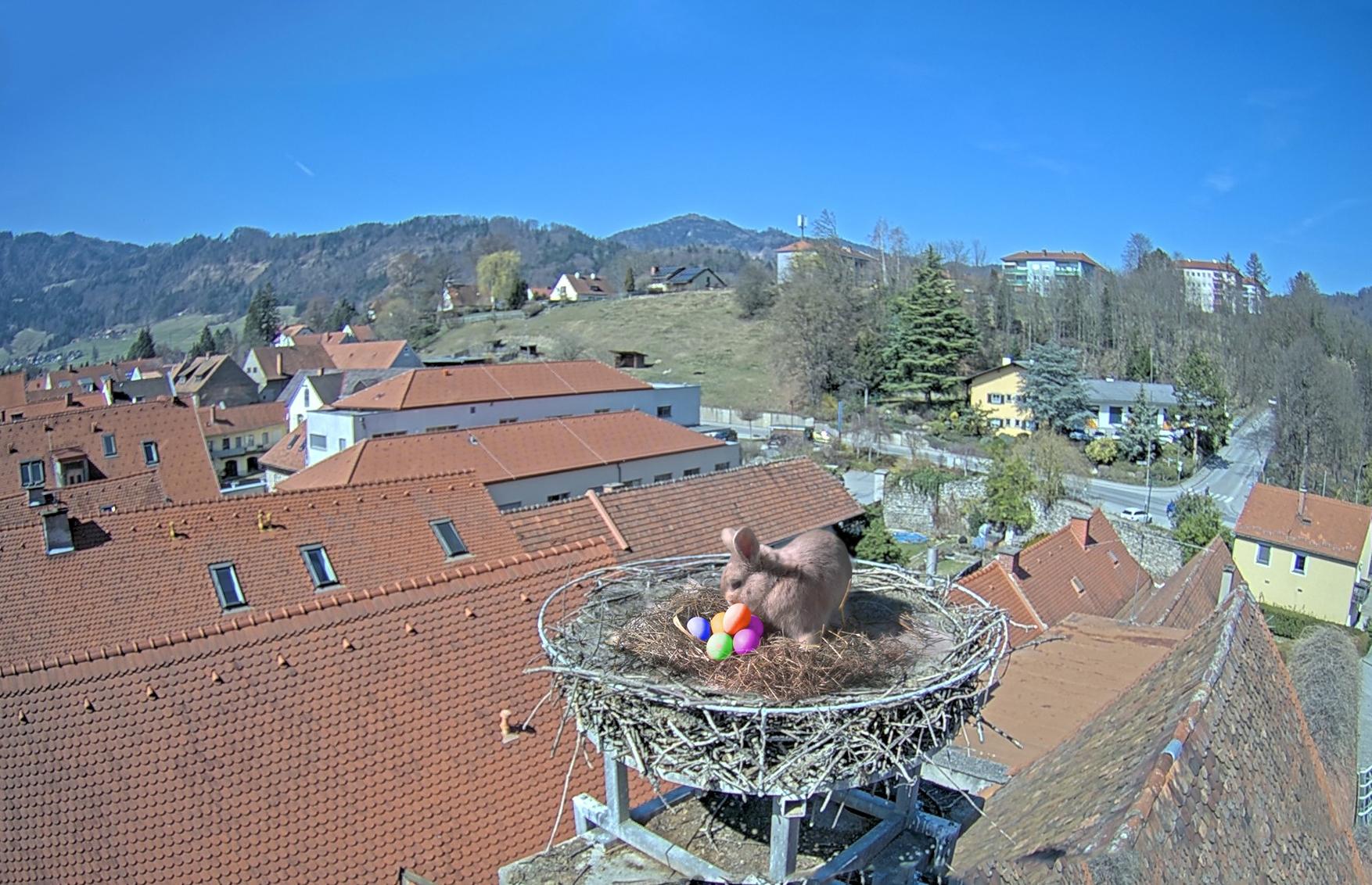Frohe Ostern 2021 Hase auf dem Dach